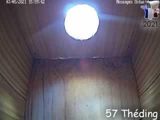 Le nid N°2 de mésange charbonnière cam 2 - via france-webcams.com